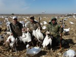 2015 Missouri Snow Goose Hunt
